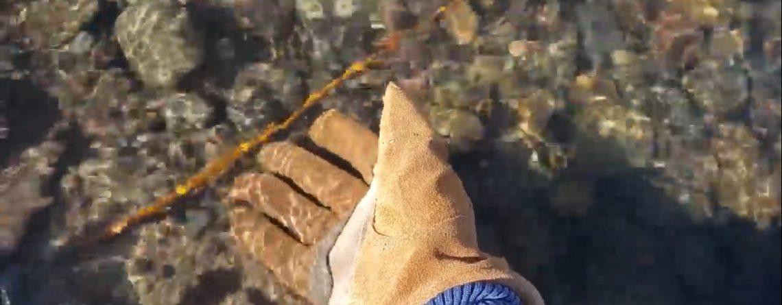 mohawk water resistant work gloves